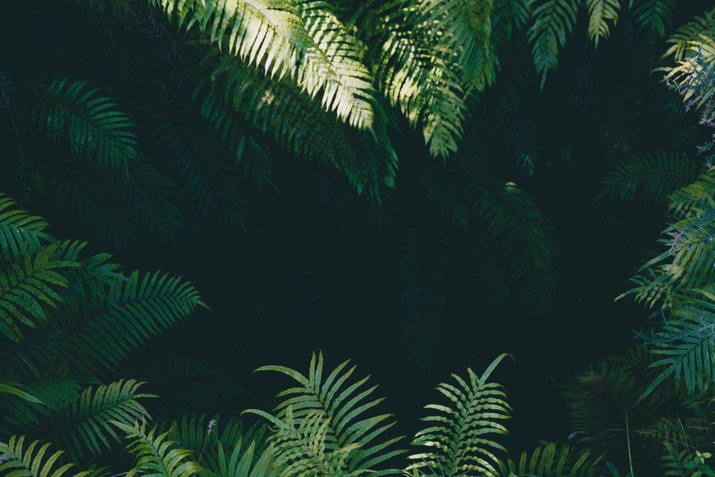 Übersicht im Leistungsdschungel